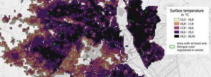 îlots de chaleur dengue
