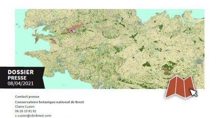 Végétation Bretagne